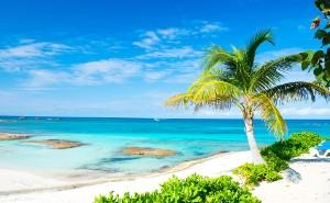 Caribbean - Other Product (PCV/PCV)