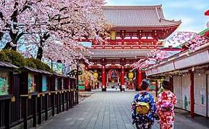 SC 7 NIGHT OSAKA & TOKYO CRUISE