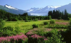 11-DAY INSIDE PASSAGE & ALASKA FJORDS
