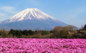 ASIA - JAPAN (TOK/YOK)